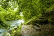 Nationalpark Thayatal, Fluss Thaya, Österreich, Niederösterrei