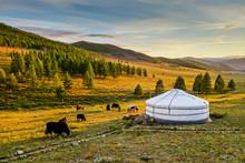 Sunset Over Mongolian Valley