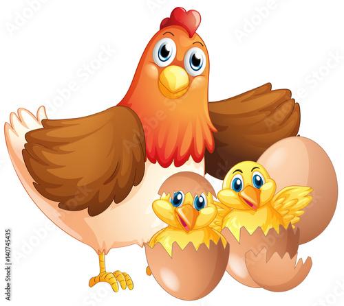 Spoed Foto op Canvas Boerderij Mother hen and two chicks