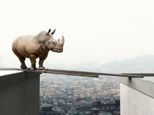 Abstract Image Of A Rhinoceros Trying To Cross An Improvised Bridge Between Two Buildings. City in The Background. Concept Of Courage And Risky Risk