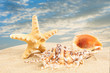 Summer vacation concept. Summer Holidays in Beach Seashore. Summer background. Holiday season.