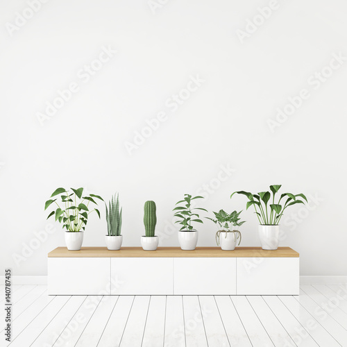 White nordic style interior with plants in pots on wooden console and empty space on the wall. 3d rendering. Wall mural
