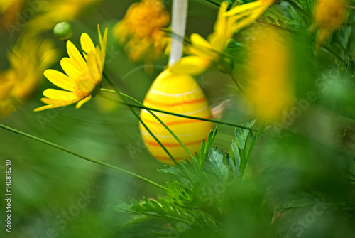 Photo  Eastern egg in a plant