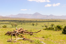 View Of The Tsavo East Savanna...