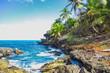 Wild tropical rocky shore, bay, lagoon. Sea stormy Splash, Green palm trees on the rocks. Las Galeras, Samana, Dominican Republic