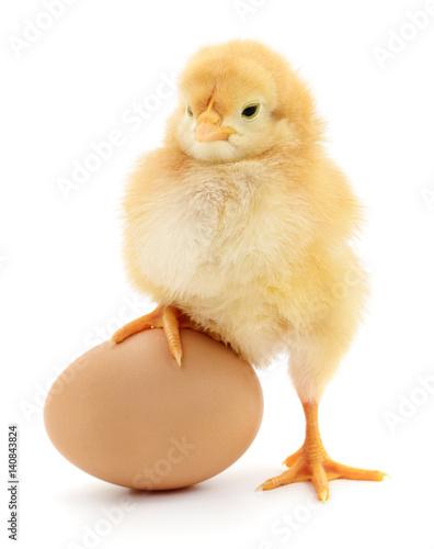 Keuken foto achterwand Kip chicken and egg