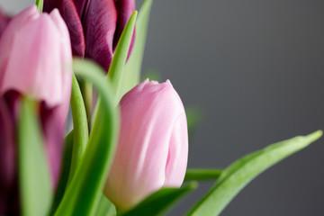 Tulpen Blumenestrauß