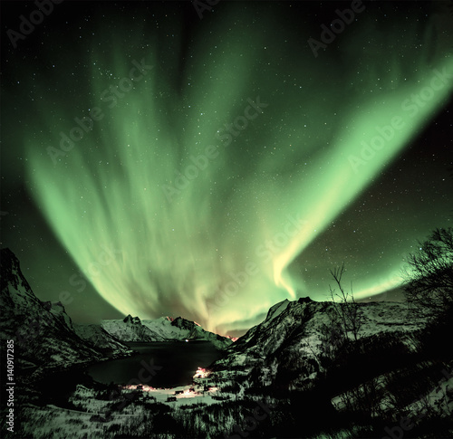 Poster Olive Aurora borealis (Polar lights) over the mountains in the North of Europe - Mefjord, Lofoten islands, Norway