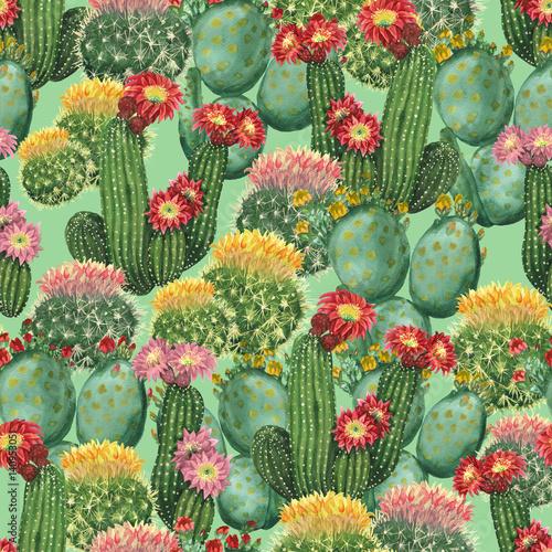 tlo-akwarela-kaktus
