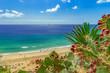canvas print picture - Strand von Esquinzo, Fuerteventura, kanarische Inseln, (Kanaren, Spanien)