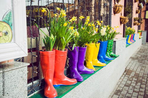 Yellow daffodils and hyacinth in multicolored rubber boots used as pots decorating the storefront window. Selective focus