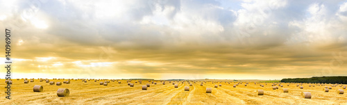 Canvas Prints Honey Amazing panorama of straw bales on open field at sunrise golden hour