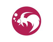Fighting Fish Logo Template