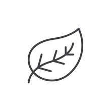 Leaf Line Icon, Outline Vector...
