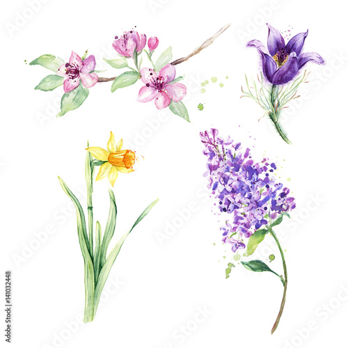 Spring Floral Set Collection With Spring Flowers Drawing