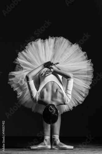 Young beautiful ballerina posing in studio Fototapet