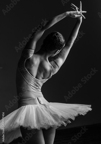 Young beautiful ballerina posing in studio Canvas Print