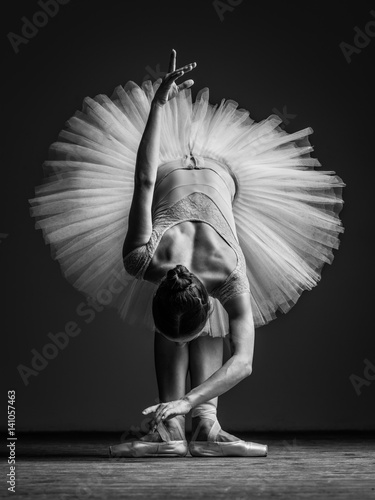 Fotografie, Obraz  Young beautiful ballerina posing in studio
