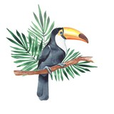 Toucan on branch. Watercolor illustration - 141064446