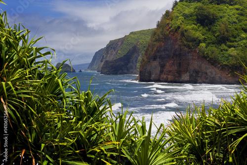 Pololu lookout coastline at North Kohala, Big Island, Hawaii - Buy