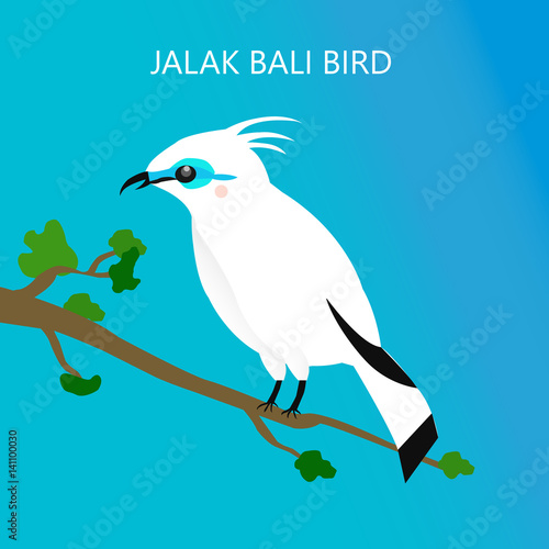 The Jalak Bali Birds Endemic Species From Indonesia Buy This Stock Vector And Explore Similar Vectors At Adobe Stock Adobe Stock
