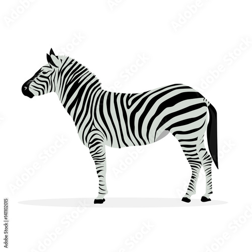 In de dag Zebra Two color illustration of zebra profile isolated on white background.