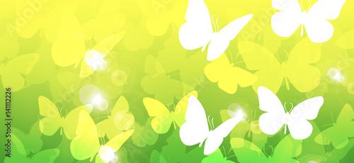 Fotografie, Obraz  farfalle, silhouette, sagome, volare, leggerezza, volo