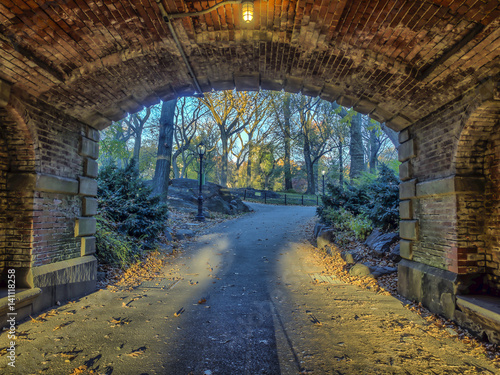 Fotografía Central Park, New York City