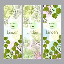 Herbal Tea Collection. Linden Banner Set.