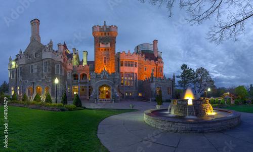 Fotografie, Obraz  castle night