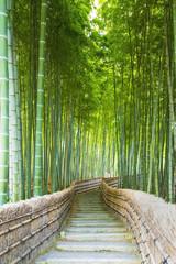 FototapetaBamboo Groves, bamboo forest in Arashiyama, Kyoto Japan.
