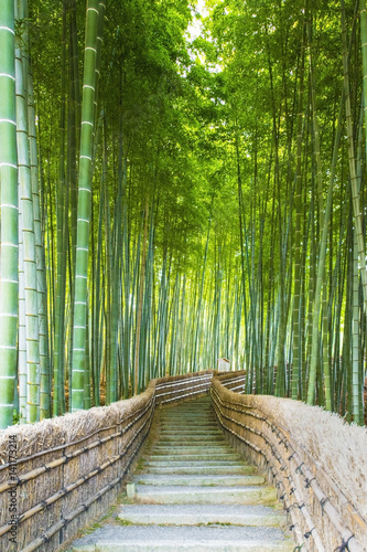 Poster Bamboo Bamboo Groves, bamboo forest in Arashiyama, Kyoto Japan.