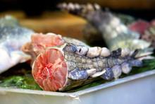 Alligator Meat, Guangzhou, China