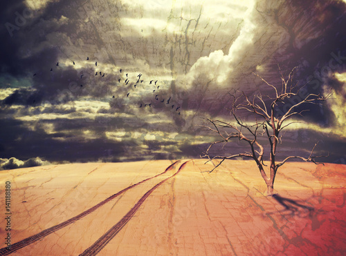 Surreal apocalyptic desert landscape with dead tree, vehicle tracks and birds under a dramatic stormy sky. Drought and climate change concepts. Grunge, wood textured digital photo manipulation.