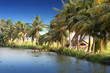 panoramic view with Coconut trees and fisherman house, backwaters landscape of Alleppey, Kerala, India