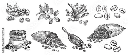 Lerretsbilde set of coffee beans in bag in graphic style hand-drawn vector illustration
