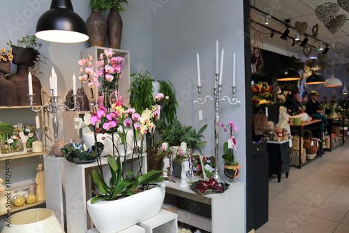 Storczyki, świeczniki i inne kwiaty w kwiaciarni. - 141214014