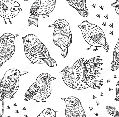 Photo Seamless pattern with ink hand drawn exotic birds