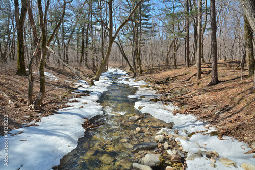 Spring on small river 3