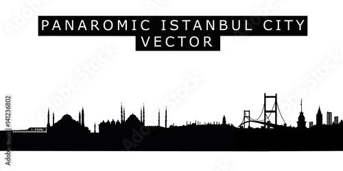 Panoramic Istanbul City Skyline Vector Illustration