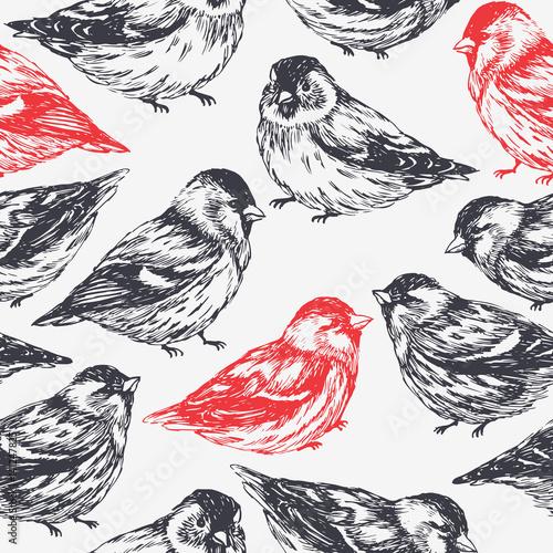 czarne-i-czerwone-ptaki-siedzace-obok-siebie