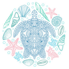 Obraz na SzkleSea turtle and shells, seastar, coral in line art style. Hand drawn vector illustration. Design for coloring book. Set of ocean elements