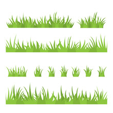 Tufts Of Grass. A Set Of Design Elements Of Nature. Vector Illustration.
