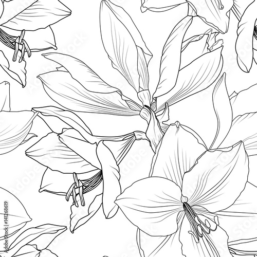 Photo  Lilly flowers close up macro view seamless pattern