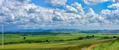 Summer Landscape, Altai, Siberia Canvas Print