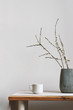 blossom twigs in vase