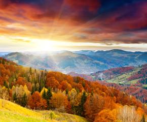 Fototapeta Do biura autumn