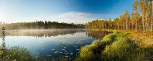 Obraz Serene morning at forest pond - fototapety do salonu