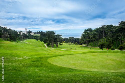 Deurstickers Groene Green Gold Fields in San Francisco. California, United States.