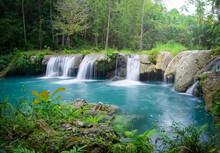 Deep Rainforest Waterfall  National Park.